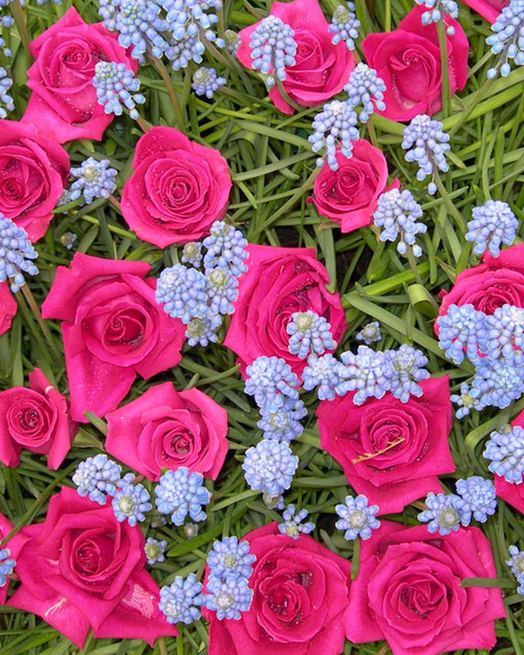 Your Best Flower Gardens Martha Stewart