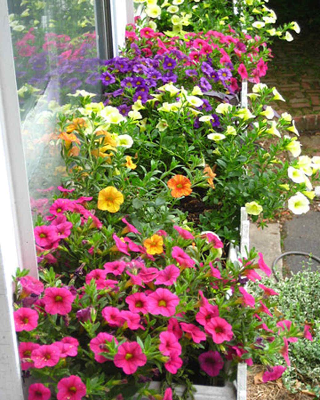 ori49022_your_garden.jpg