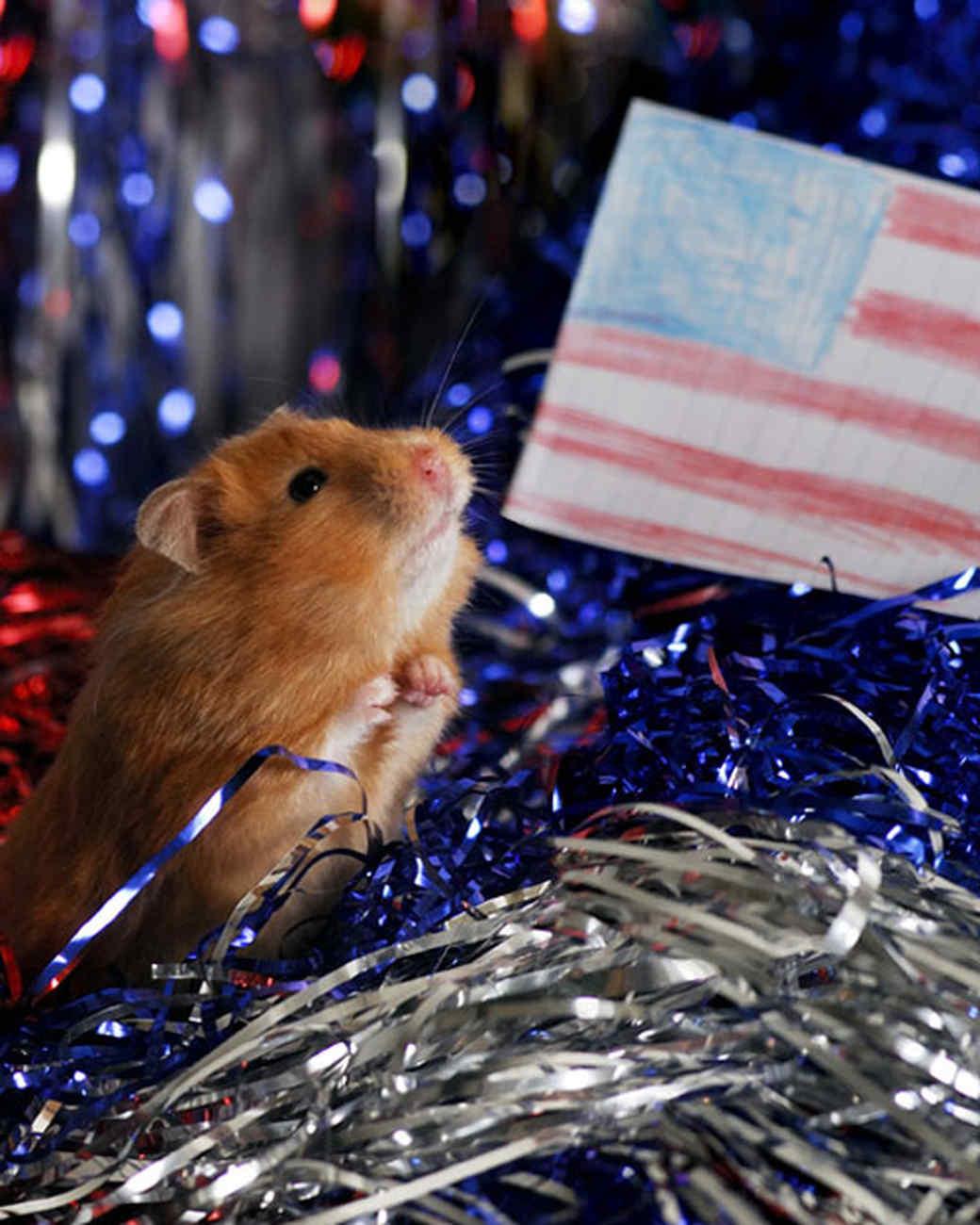 p_patriotic_09_91345.jpg