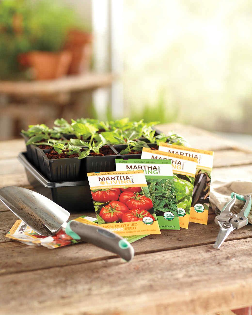Attractive Vegetable Garden Gift Ideas Part - 13: Great Start