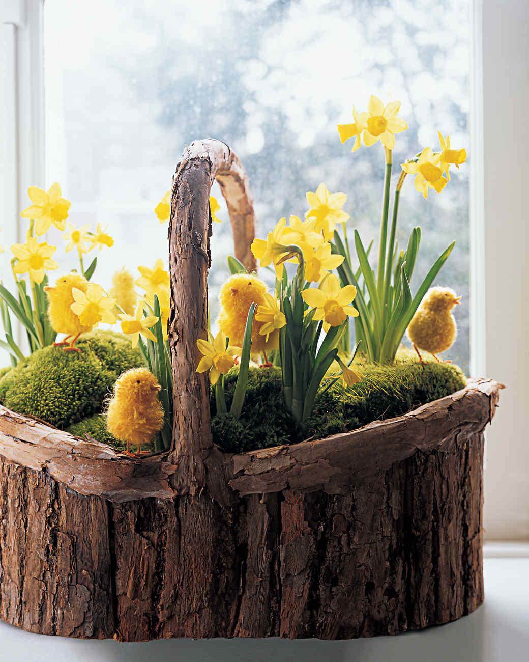 Basket of Bulbs