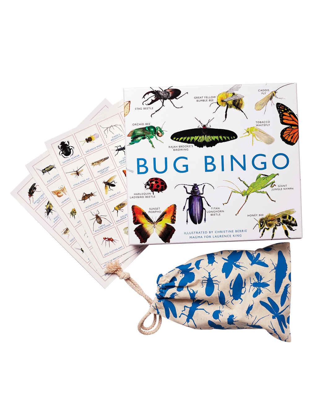 bug-bingo-060-d111151.jpg