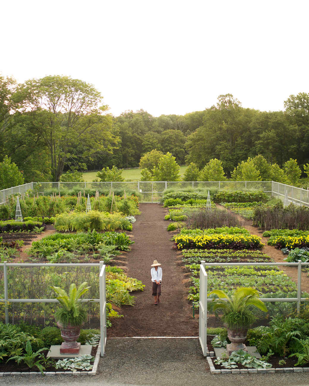 Vegetable Garden Design Ideas: Cantitoe Corners: Martha's Vegetable Garden