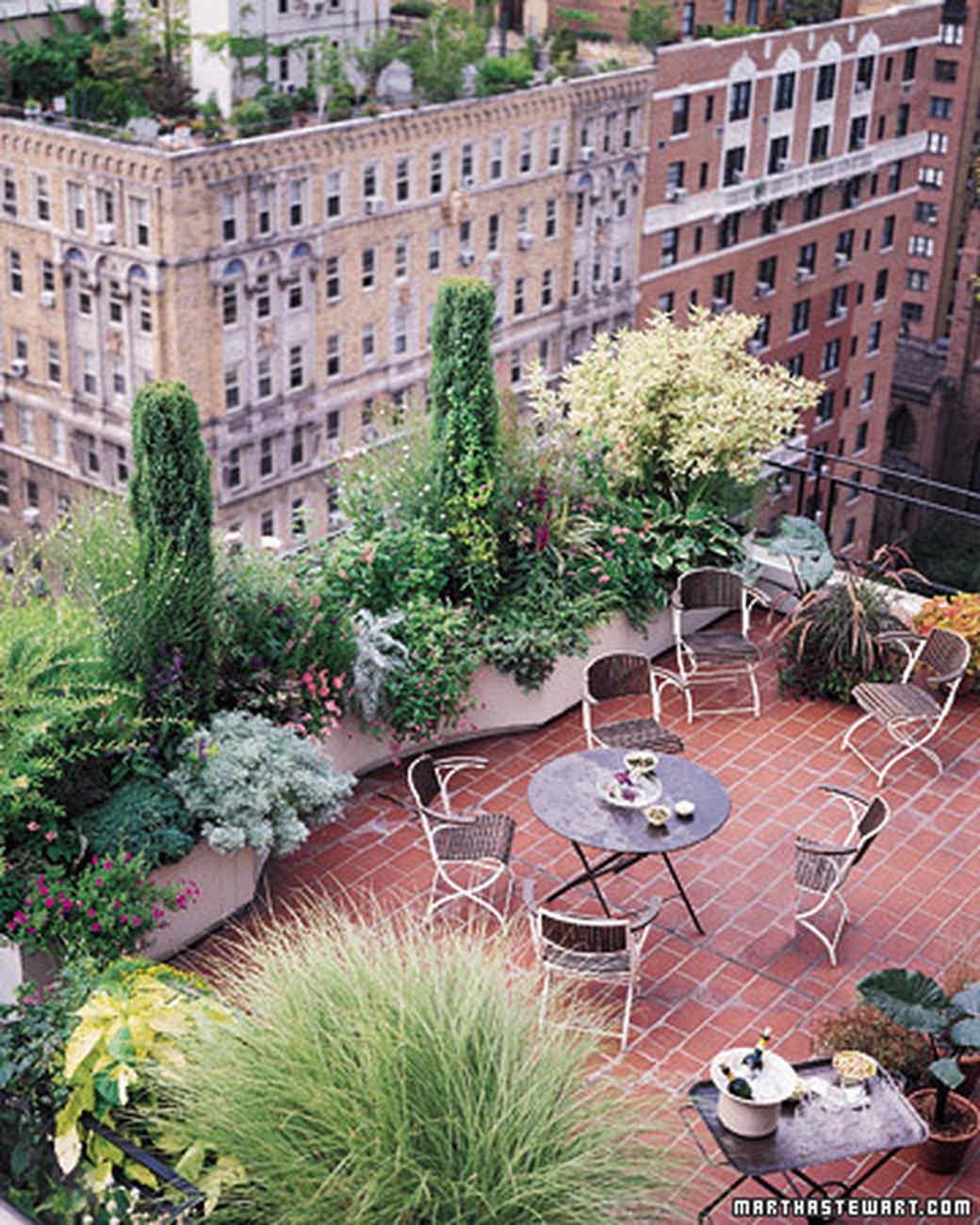 Container Garden Ideas quotes House Designer kitchen