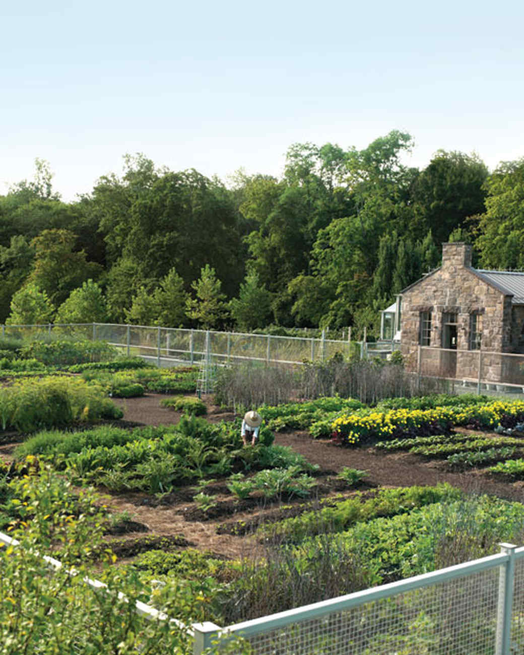 mld103321_0308_garden.jpg