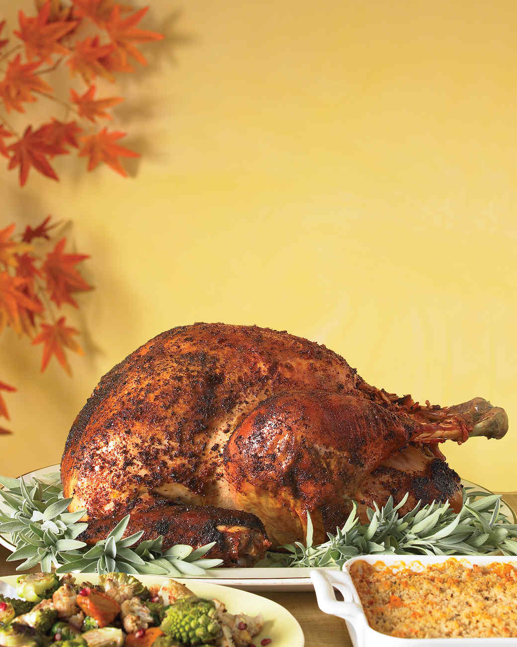 Spice-Rubbed Roast Turkey Recipe | Martha Stewart
