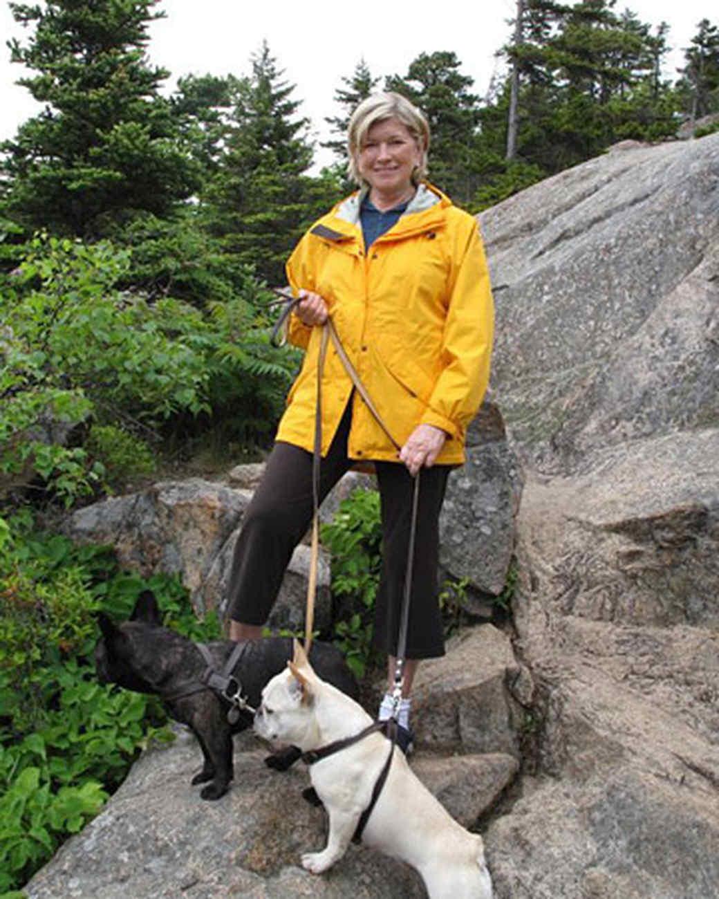 pets_best_wag_hiking2.jpg
