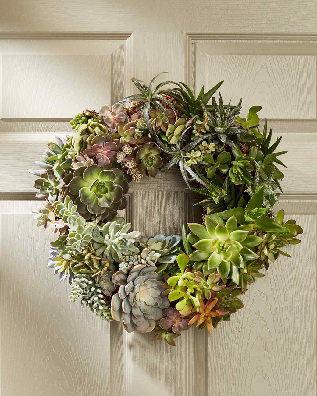 succulent wreath on the door