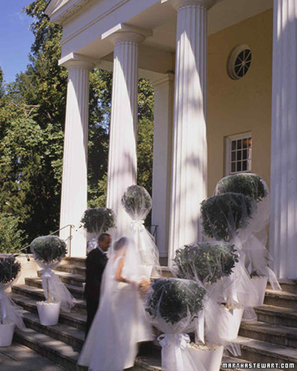 Veiled Topiaries Martha Stewart