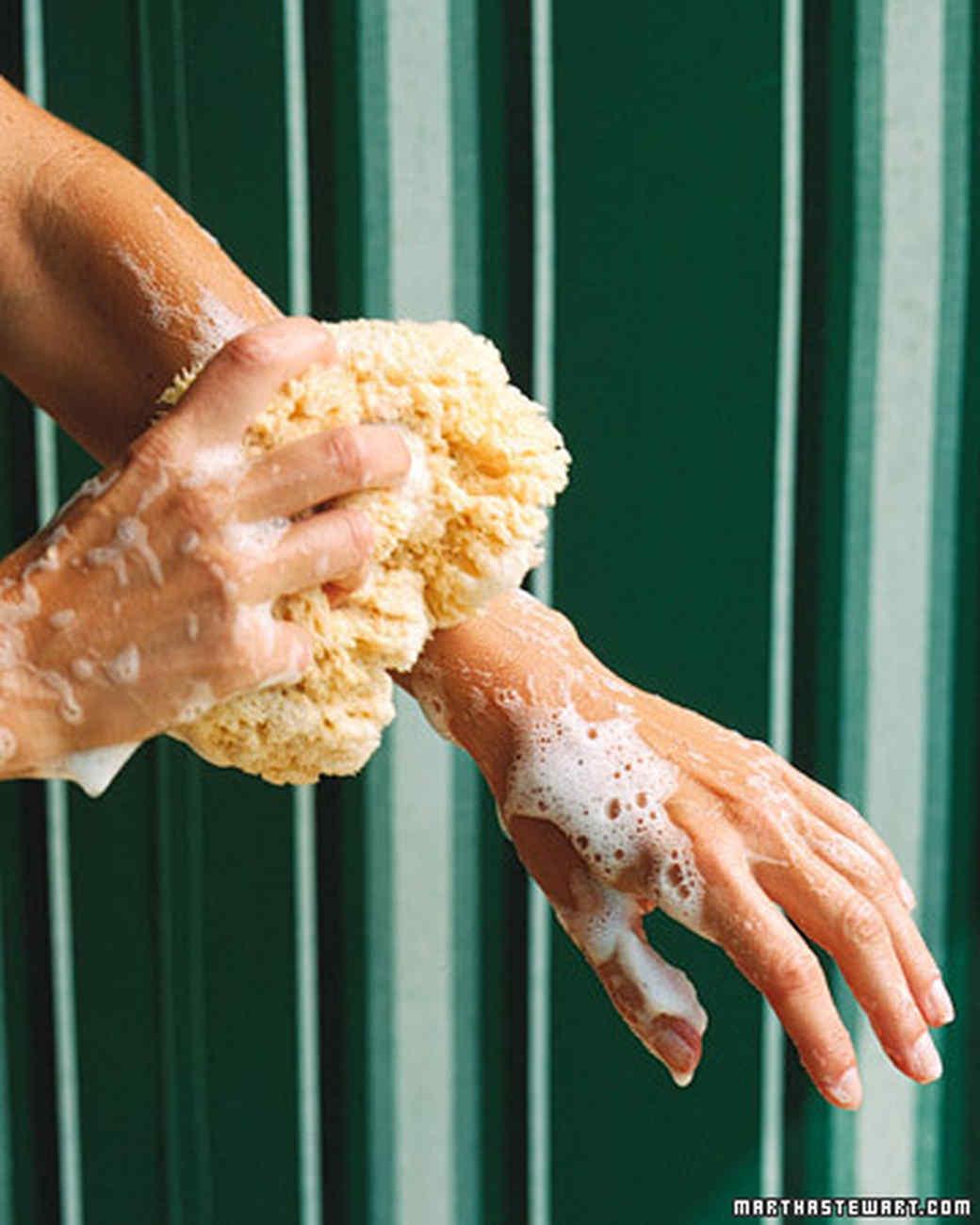 Soap in a Sponge