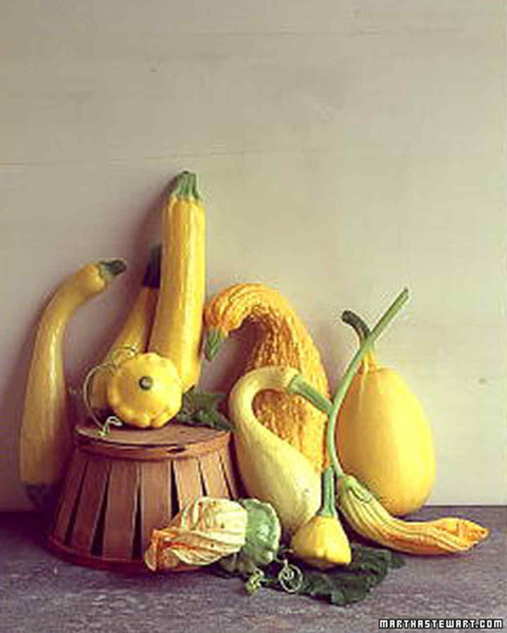 bmvn_0301_yellowsquash.jpg