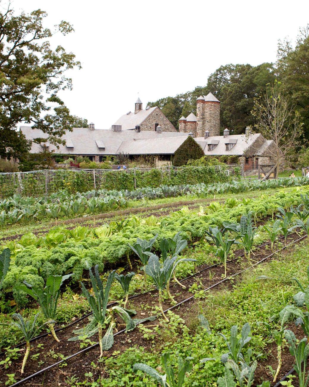 fall-farms-stone-barns.jpg
