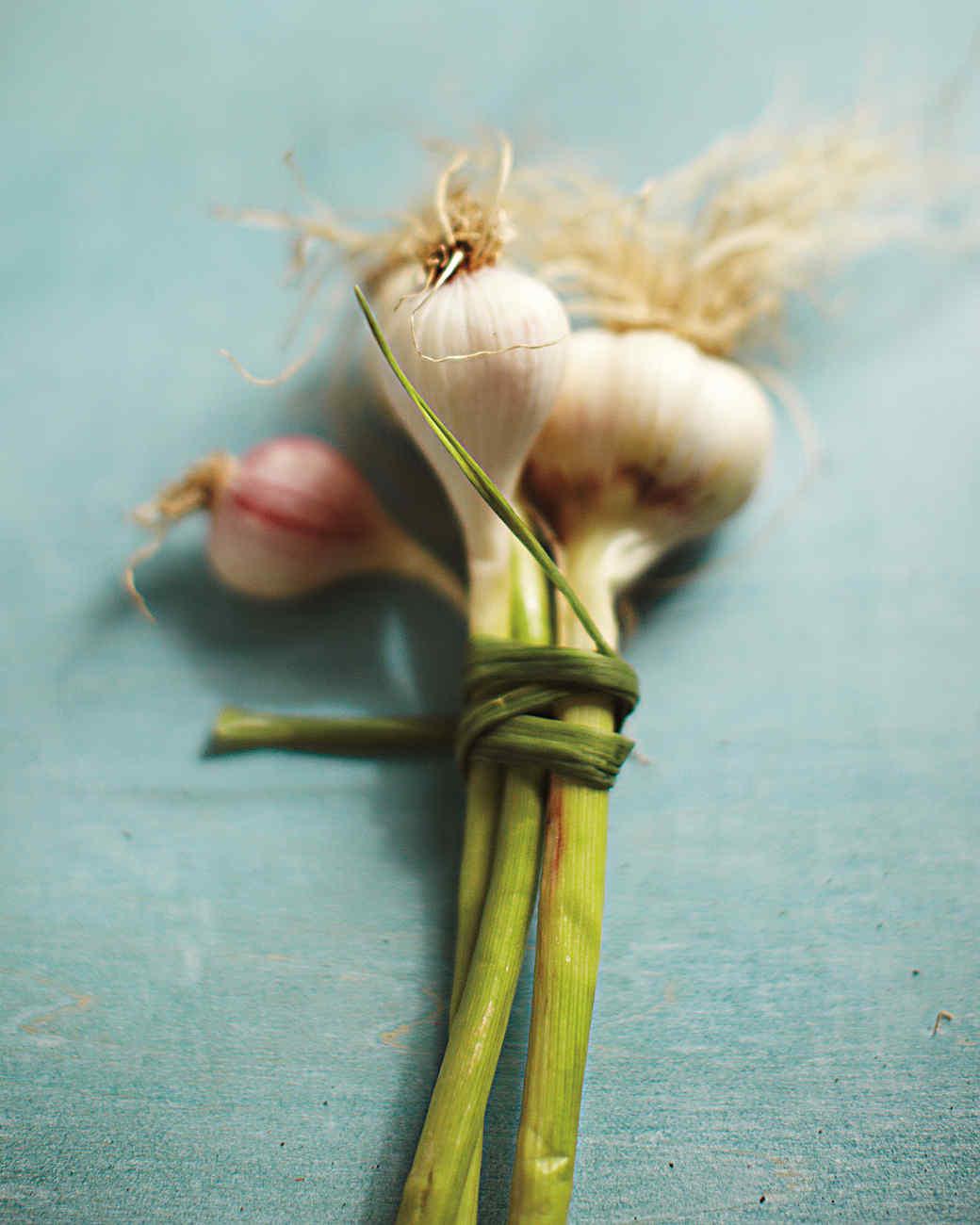 fresh-garlic-mld107571.jpg