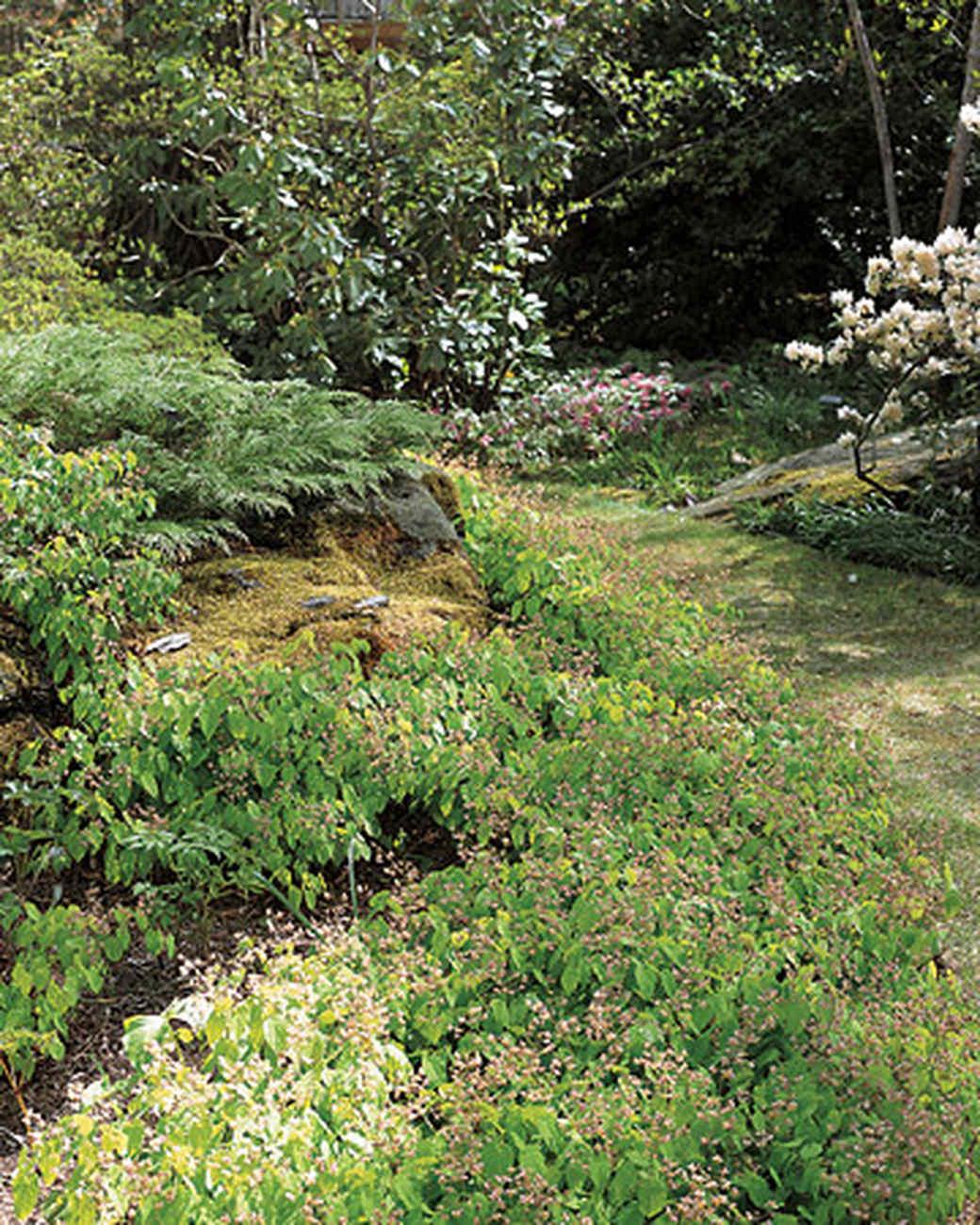 ml_0403_epstein_garden.jpg