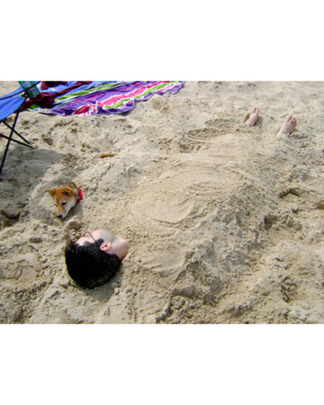 pets_beach_ori00095452.jpg