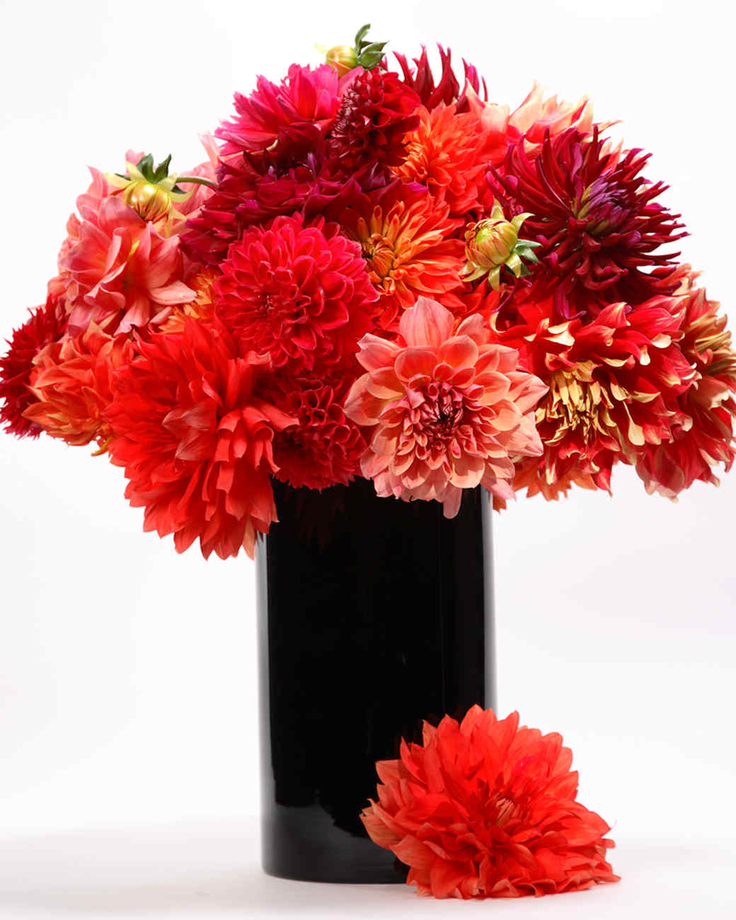 Red flower arrangements martha stewart