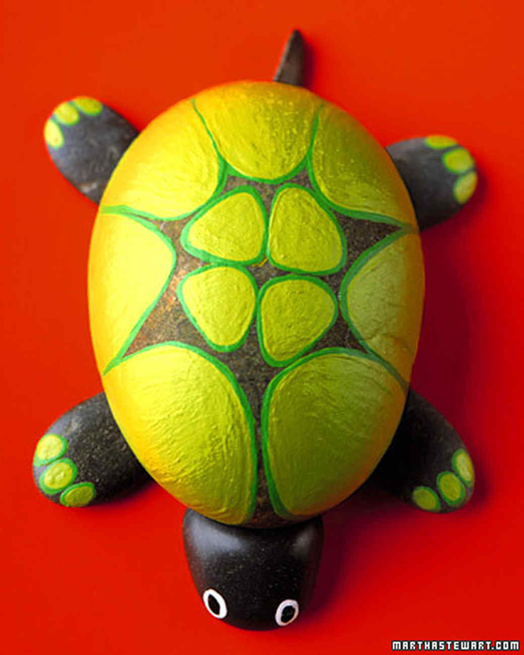 a99348_win06_turtlegrid.jpg