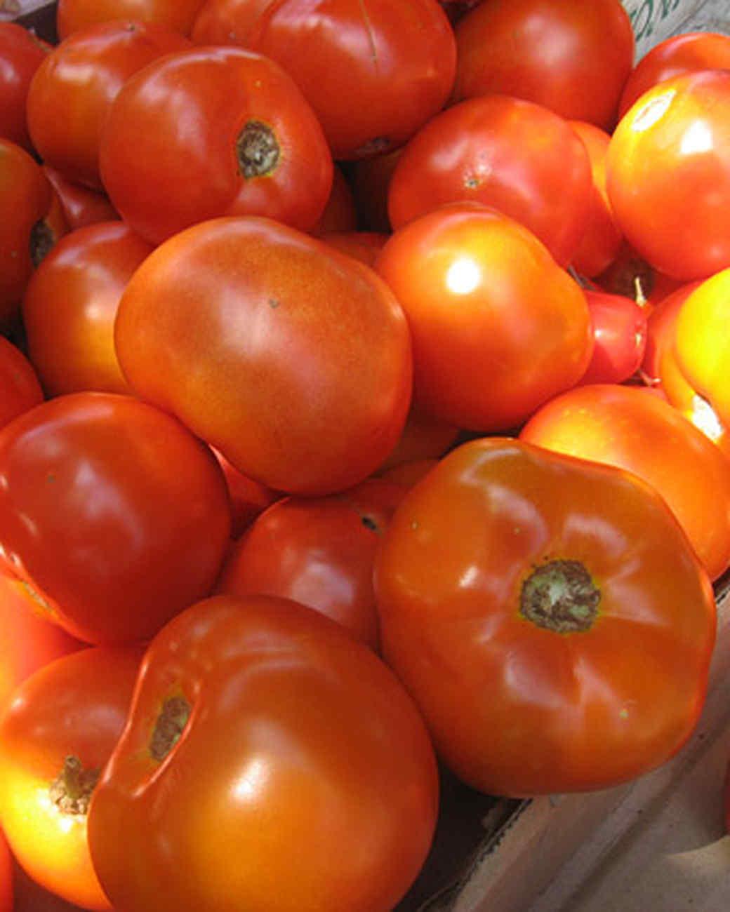 edfblg_082608_tomatoes3.jpg