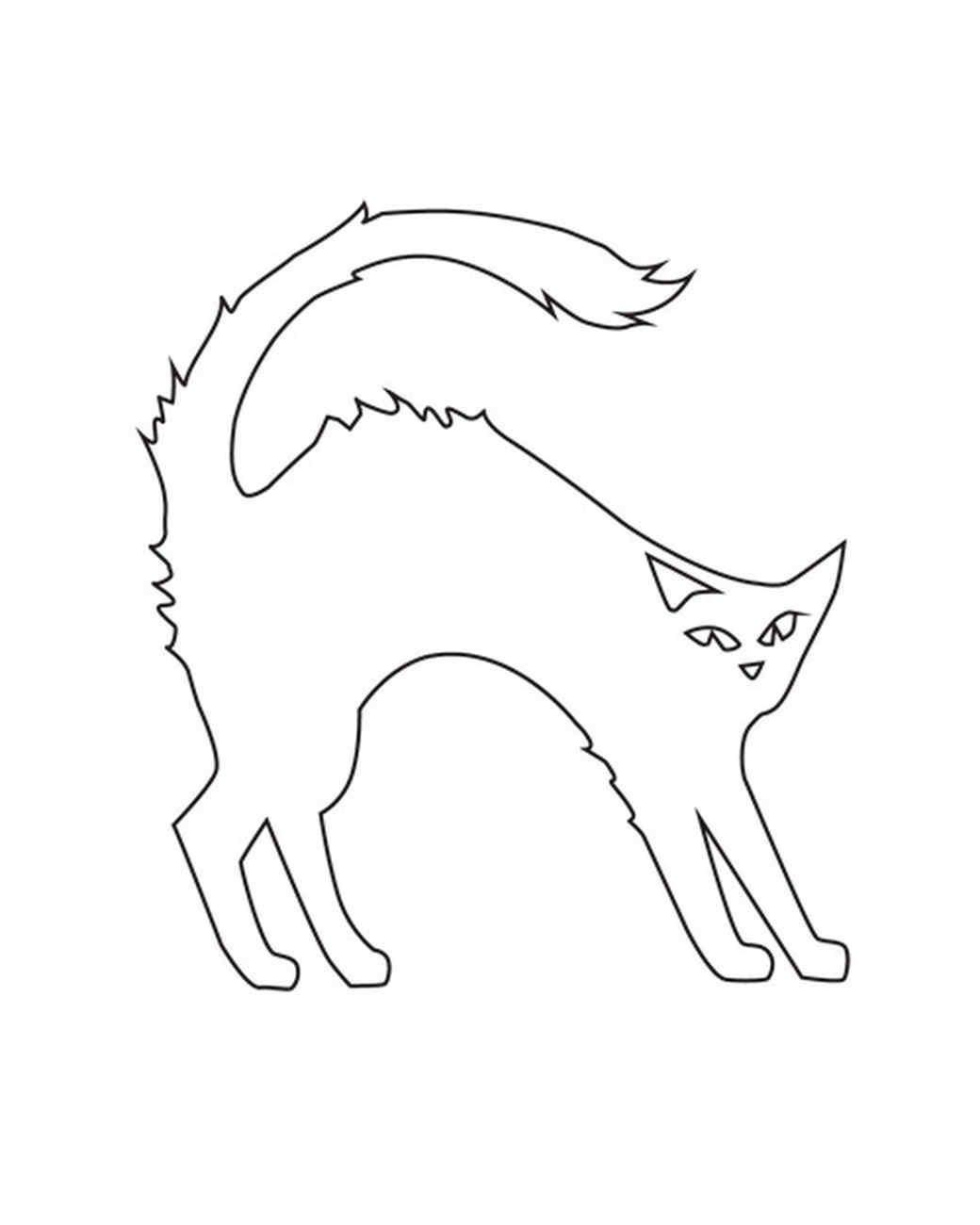 la_1007_pumpkinwkbk_cat.jpg