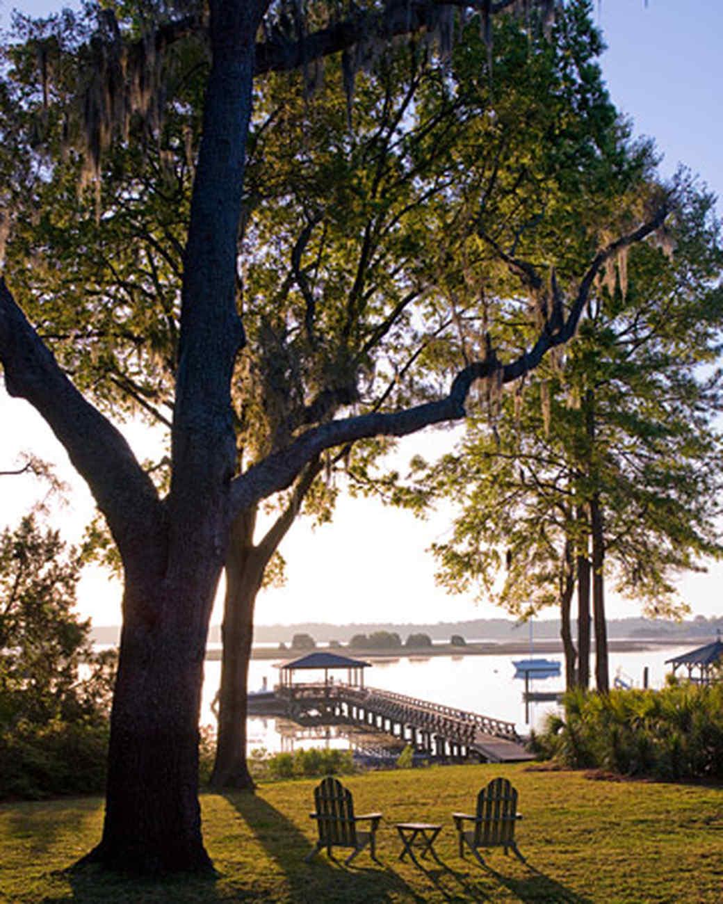 ld104004_0808_tree_dock.jpg