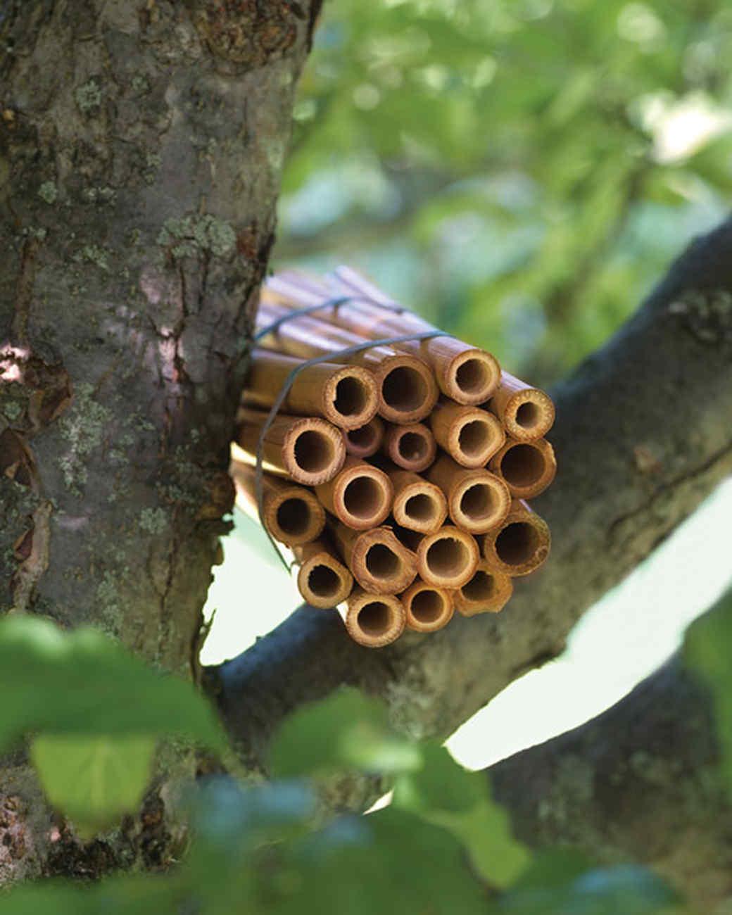 bamboo bee house martha stewart