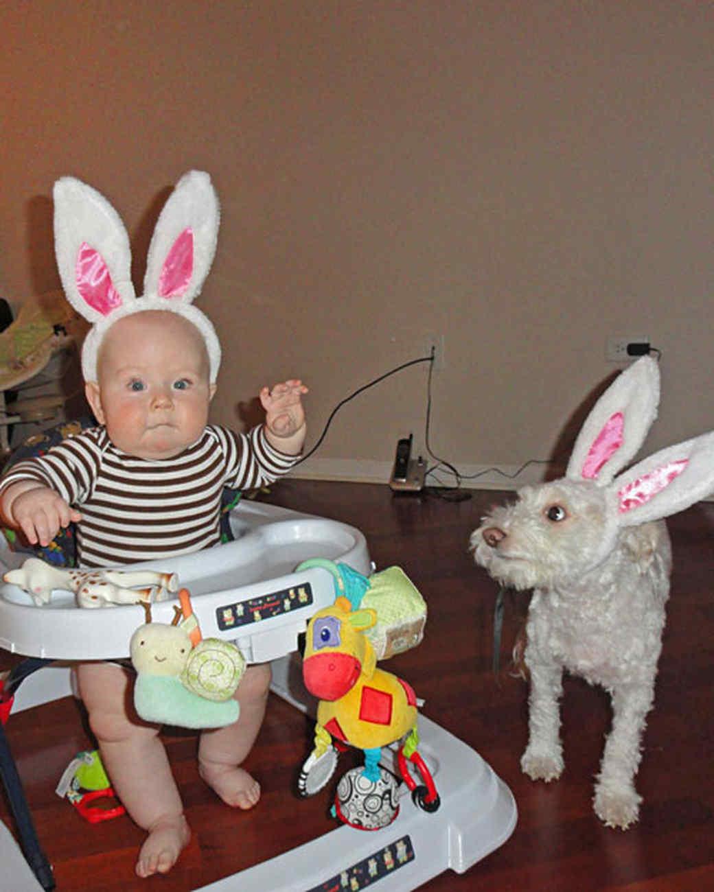 ms_celebrate_baby_bunny.jpg
