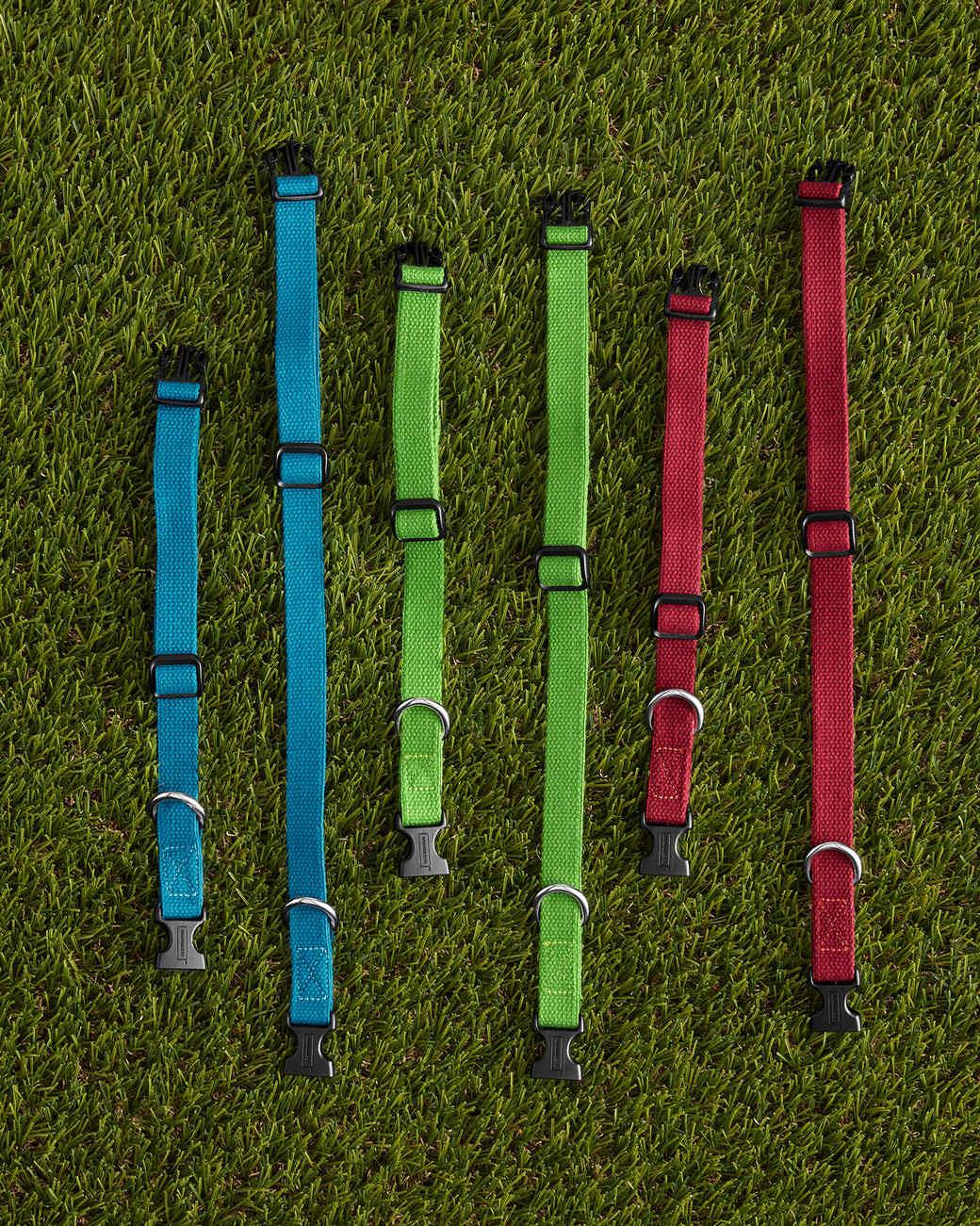 brandless-pet-collars-pr-0319