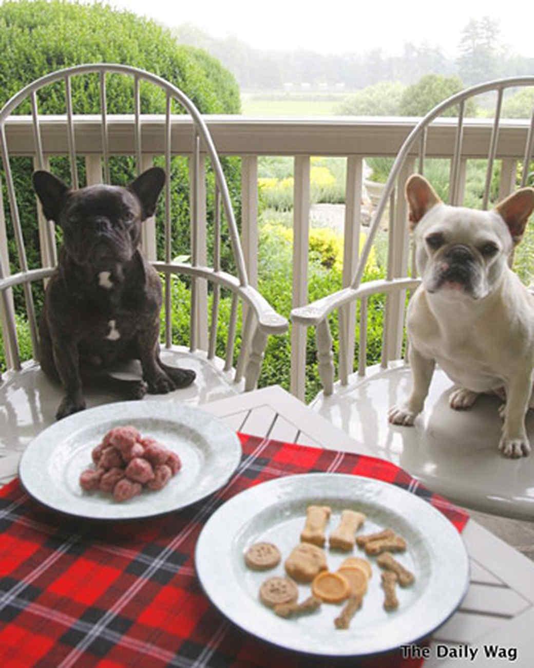 pets_best_wag_luncheon1.jpg