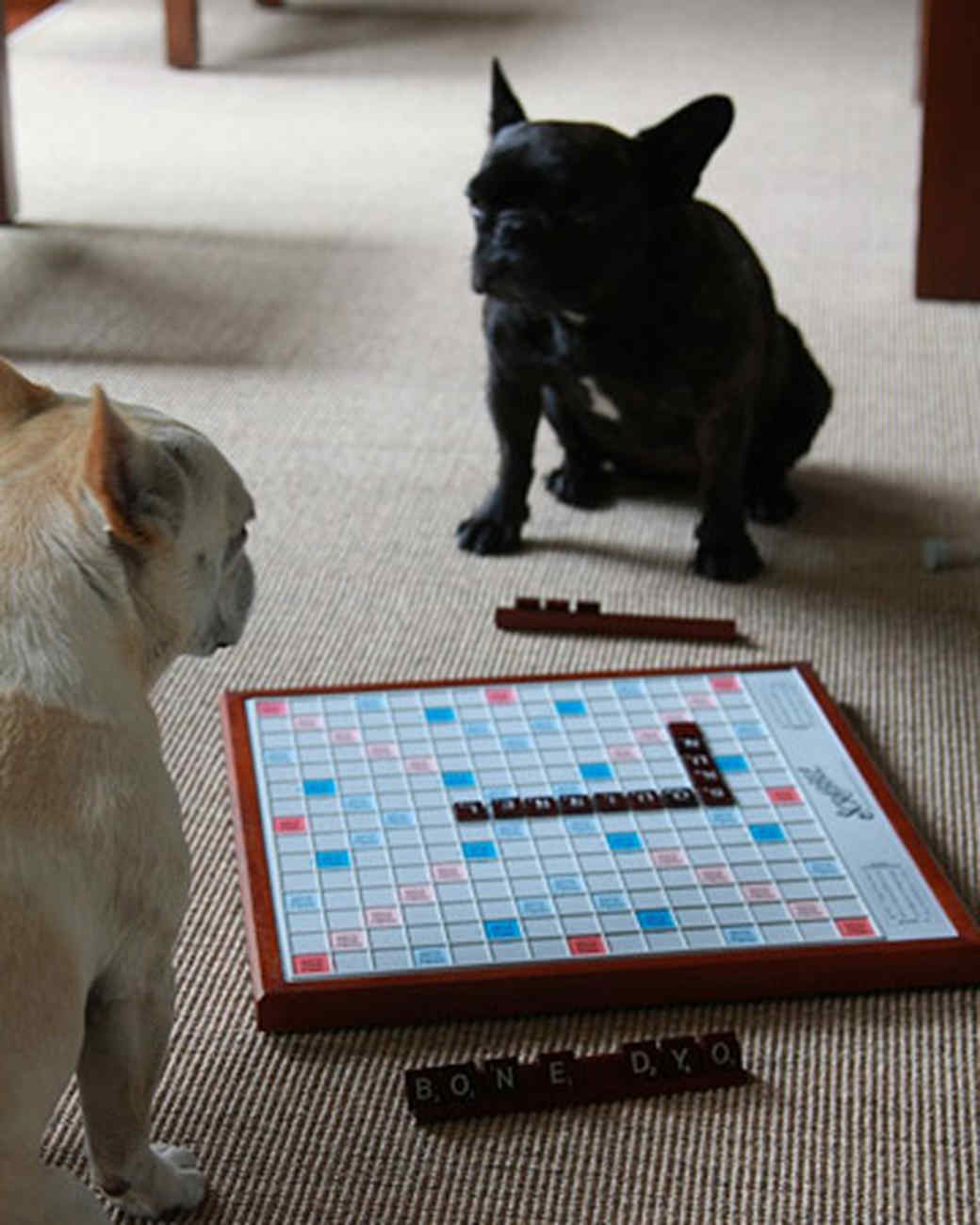 pets_best_wag_scrabble1.jpg