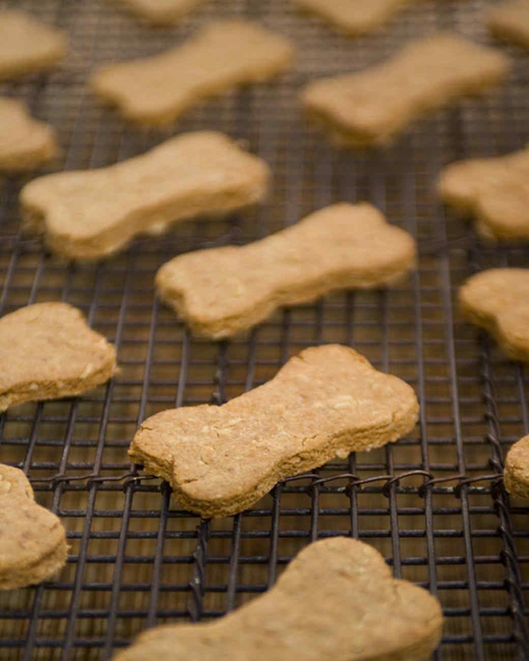 Martha Stewart Dog Food Recipes