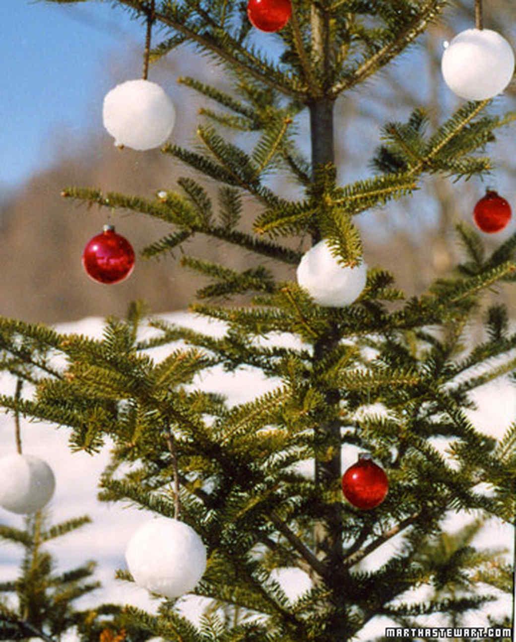 Boughs of Snowballs