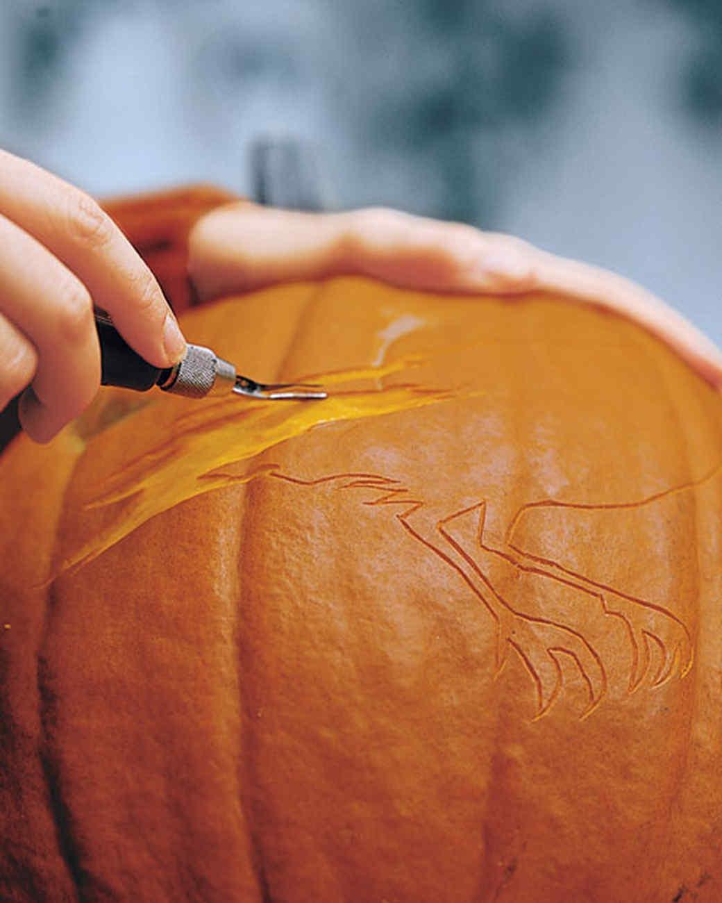 la102831_1007_pumpkinht4.jpg