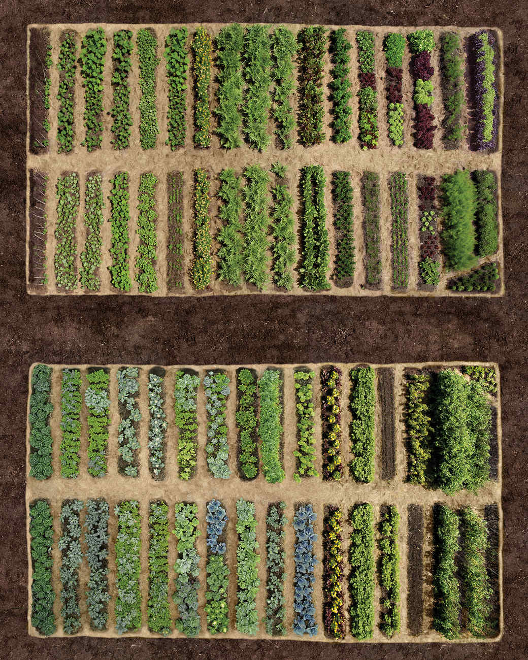 Great Vegetable Garden Ideas Part - 49: Planning Your Garden
