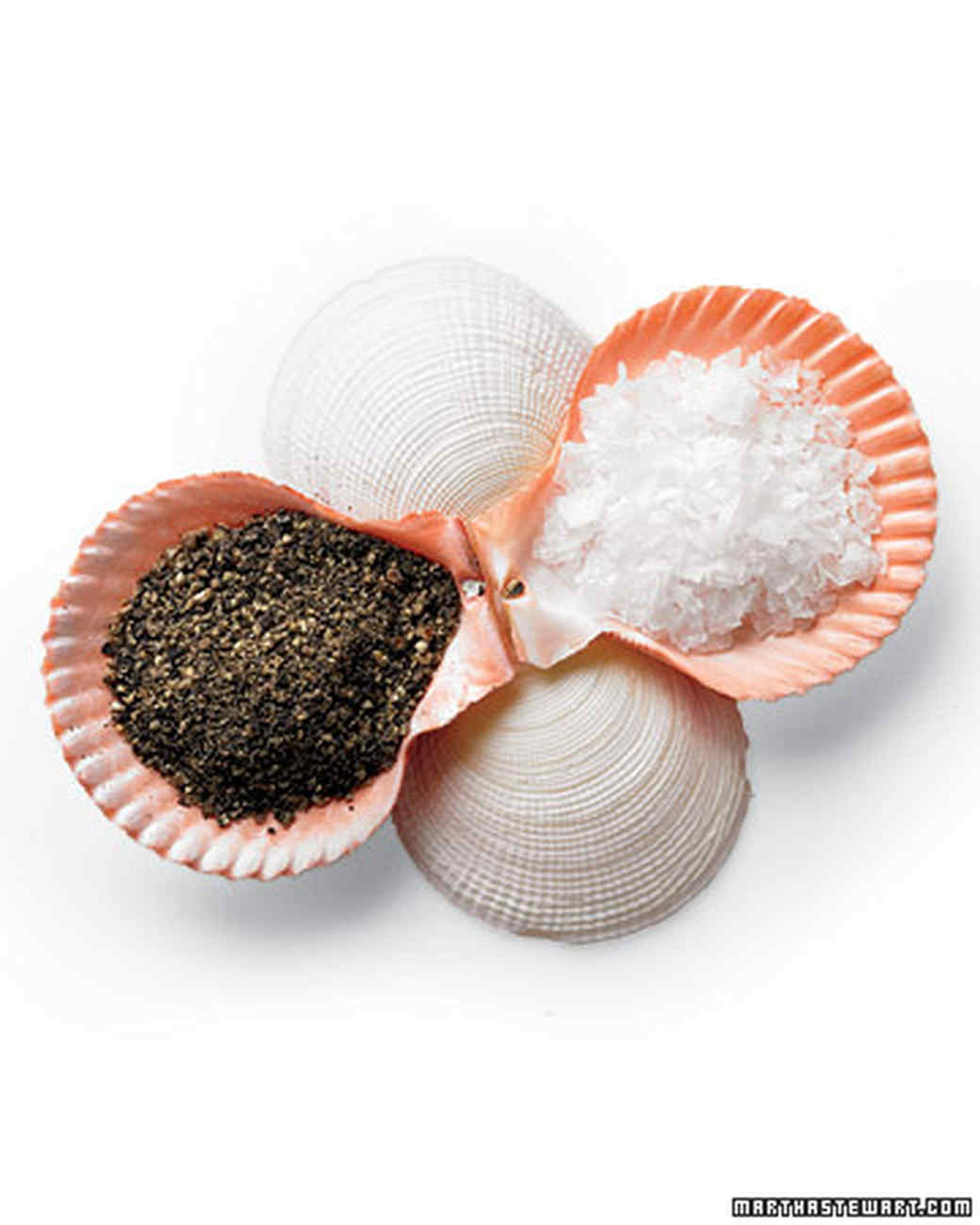 Shell Salt-and-Pepper Dishes
