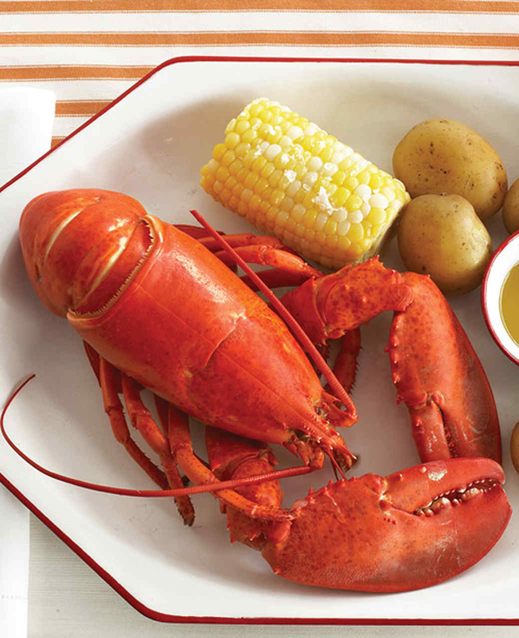 mld104519_0709_lobster_l.jpg