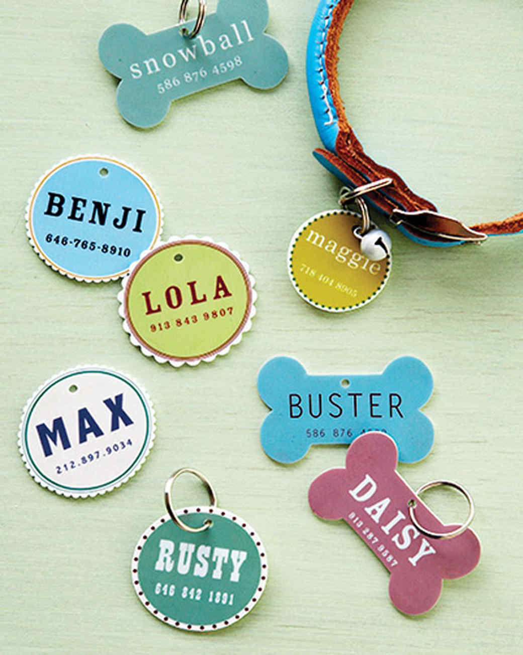 pet id tag martha stewart