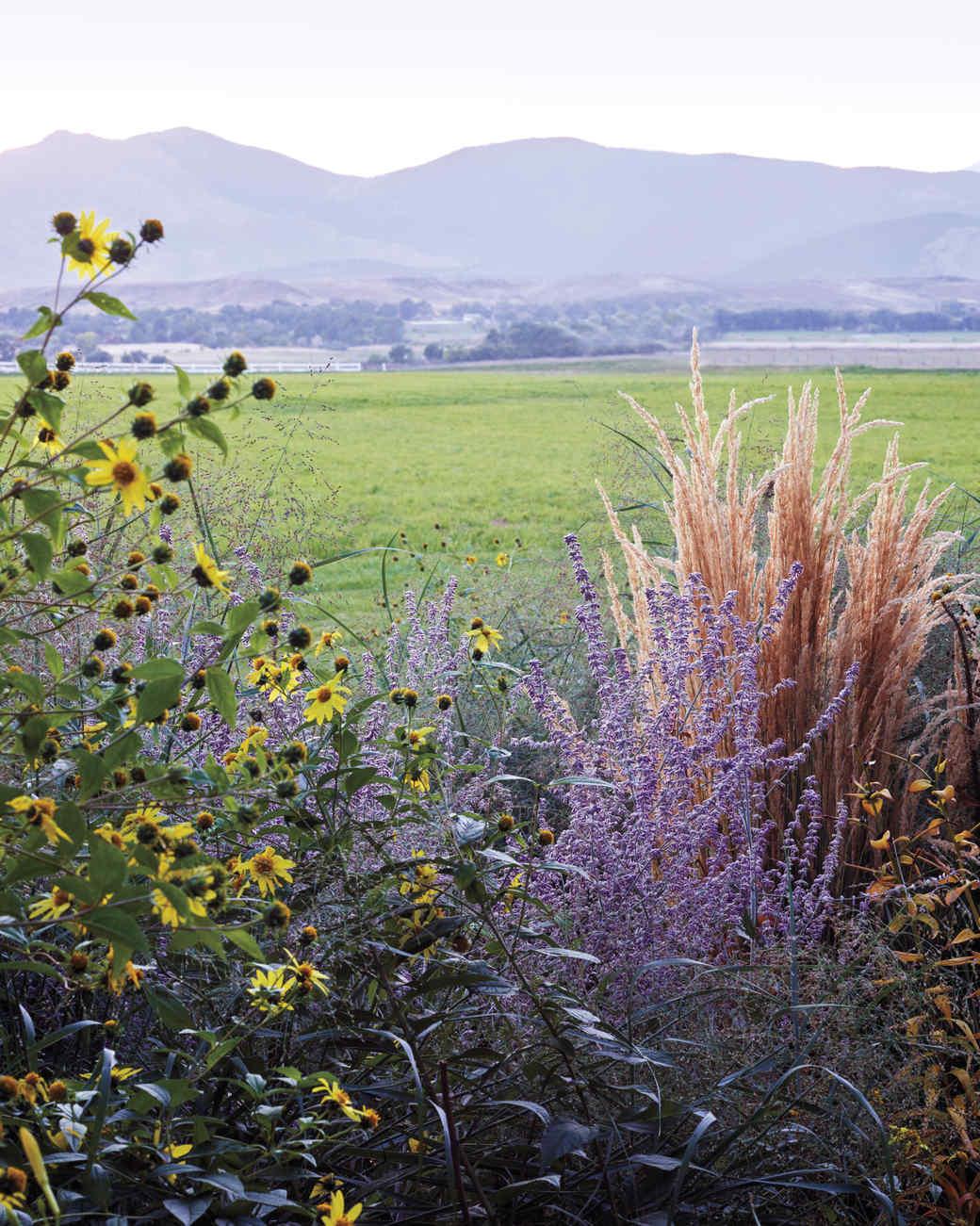ogden-garden-200-d111601.jpg