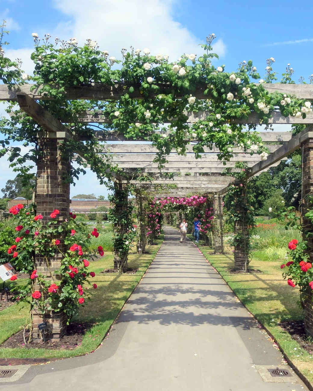 royal-botanic-gardens-24.jpg