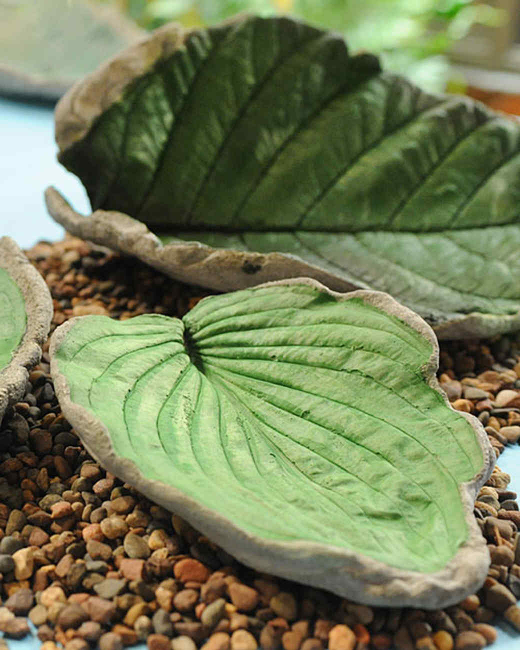 6001_101110_cement_leaves.jpg