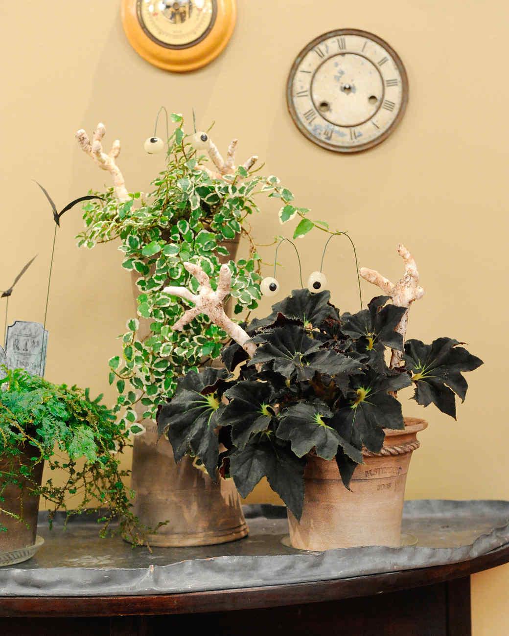 Haunted Houseplant Decorations