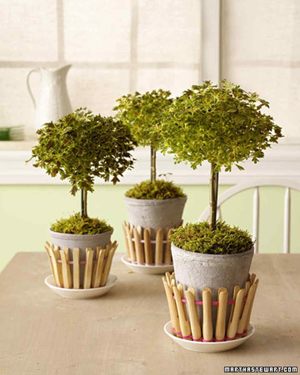 Decorative Flowerpots and Planters | Martha Stewart