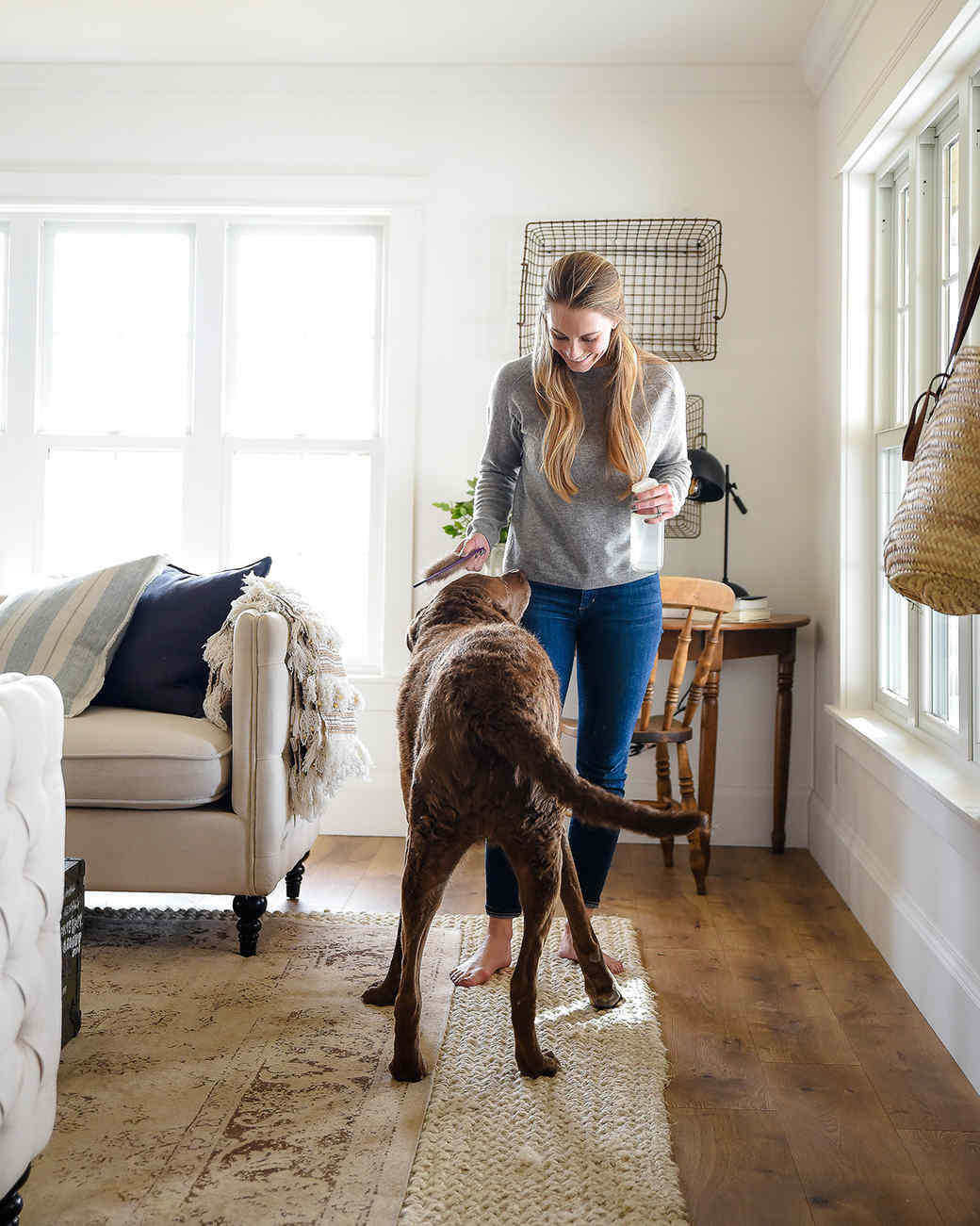 pet deodorizer dog with chloe