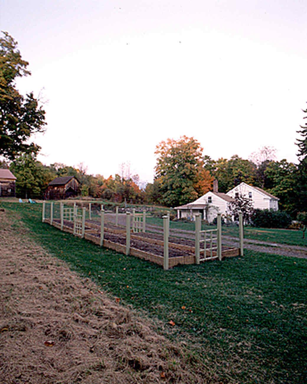 raised-beds-2-a97052-1215.jpg