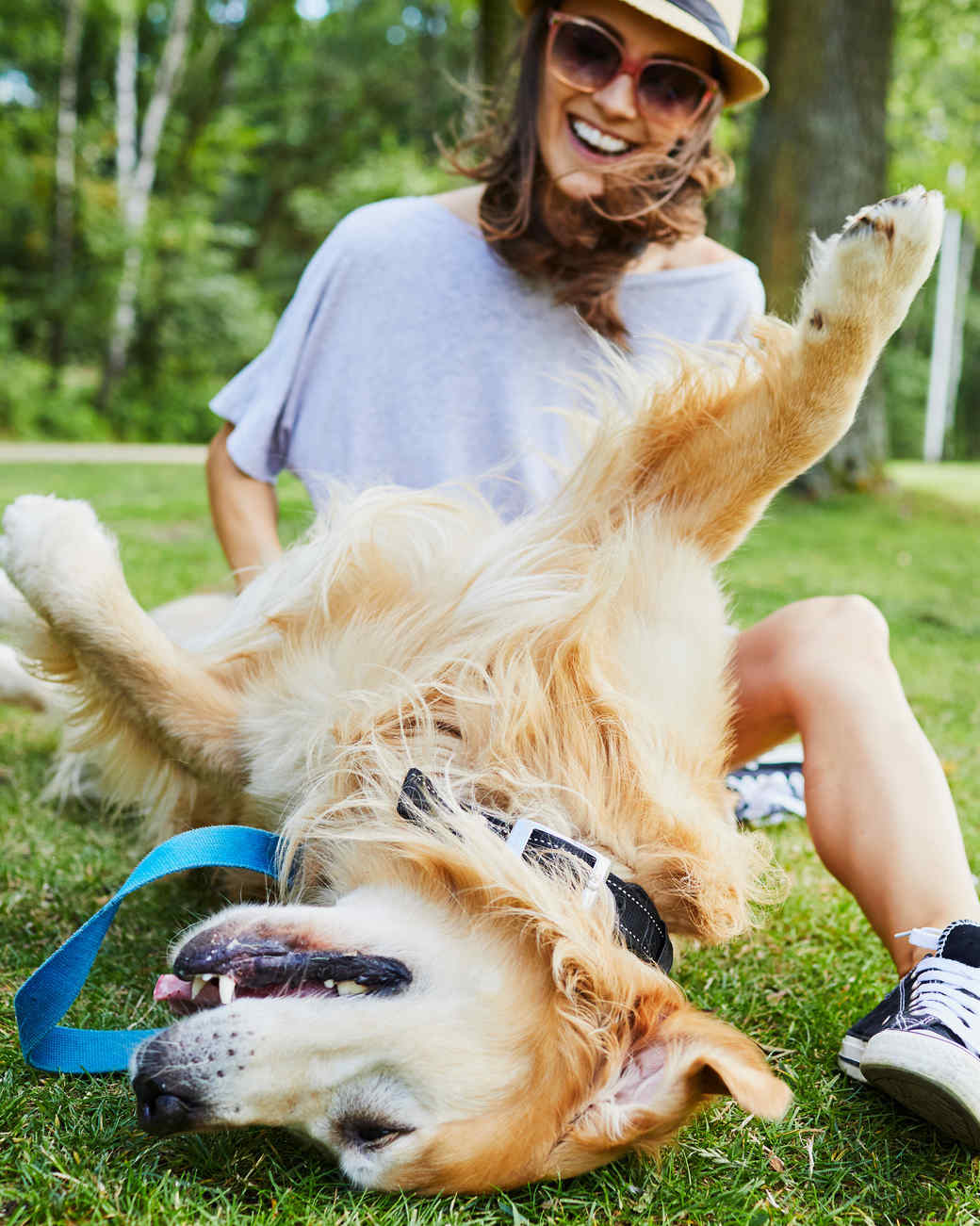 Golden Retriever Being Petted in the Park by Young Woman