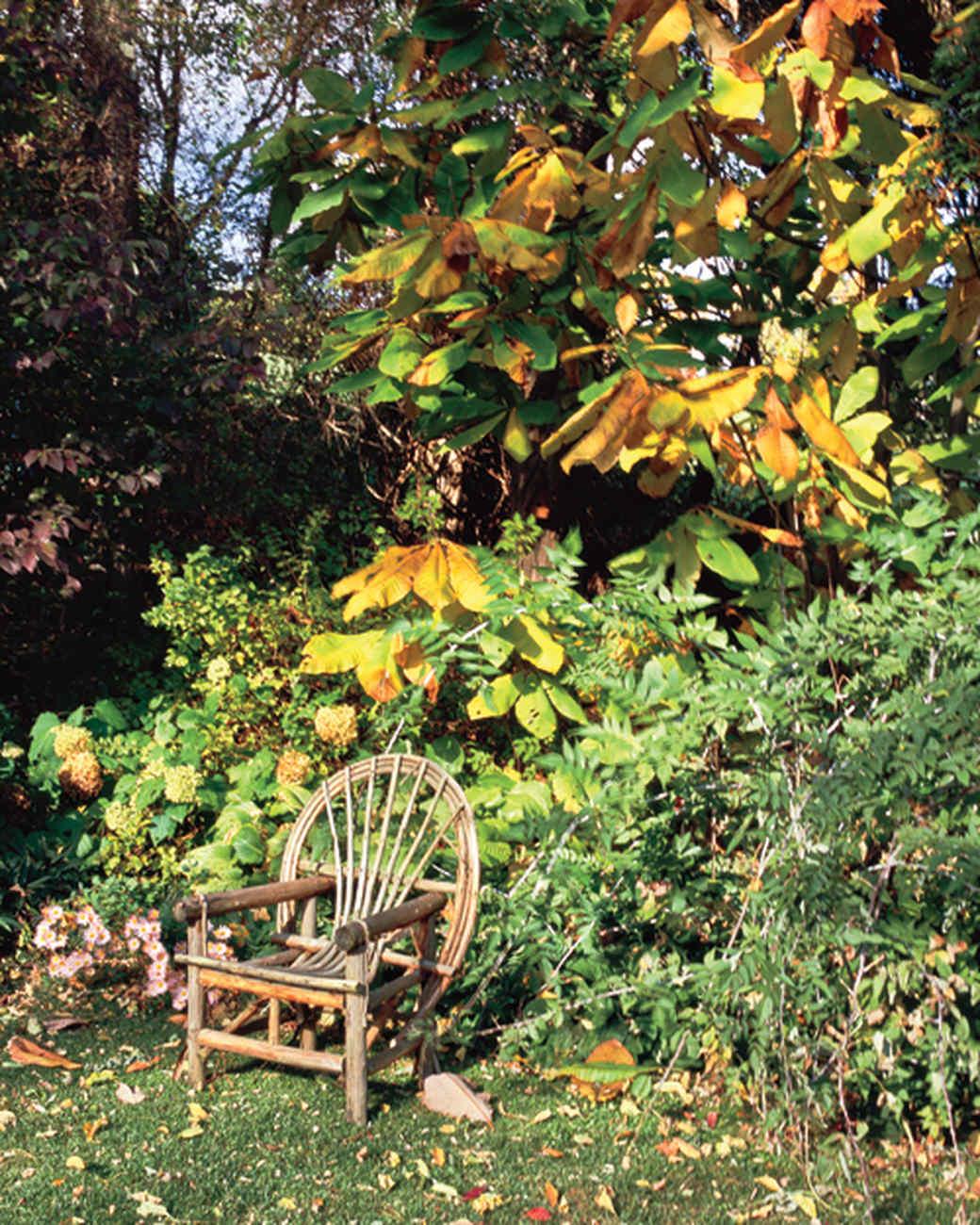 mla104022_0410_fall_garden.jpg
