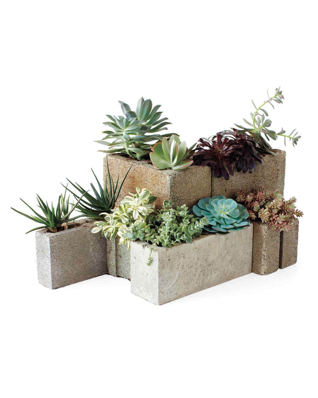 11 Creative Container Garden Ideas | Martha Stewart