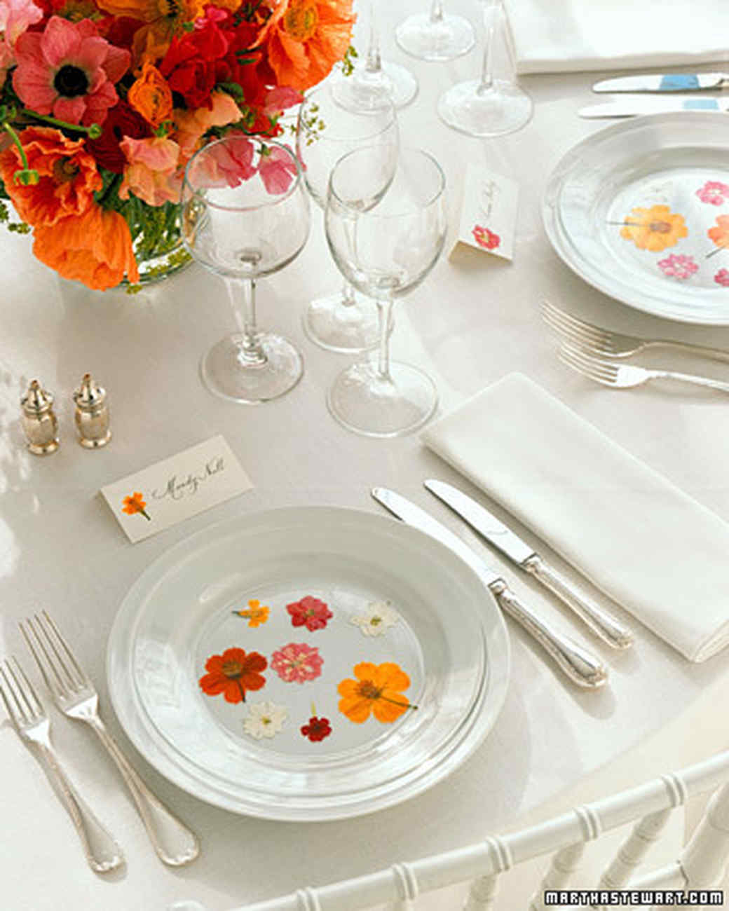 Pressed-Flower Plates