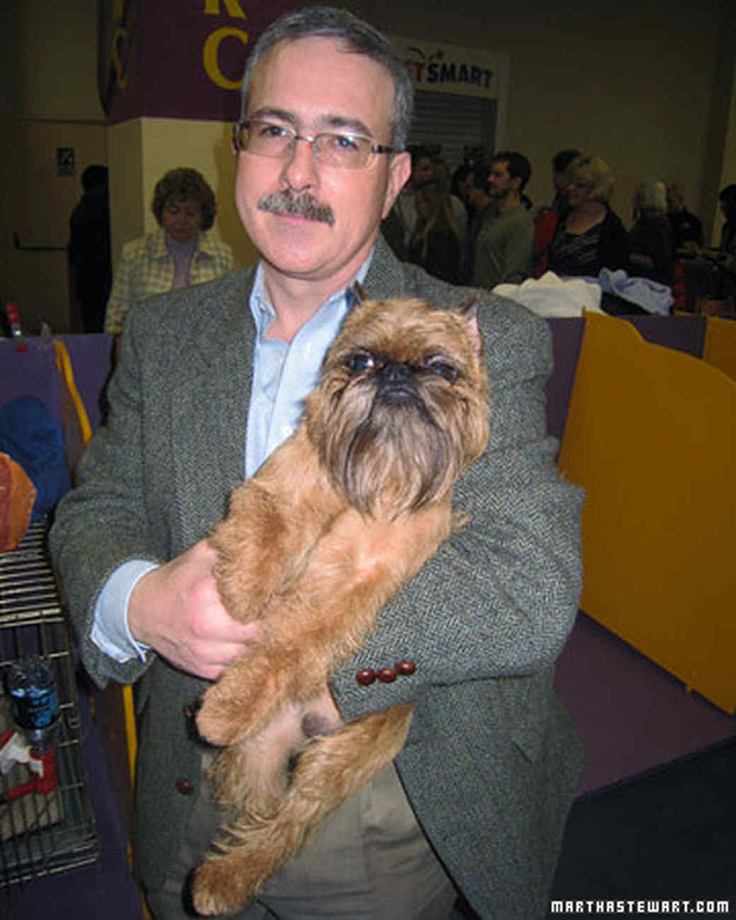 st_brussels_griffon_with_ow.jpg