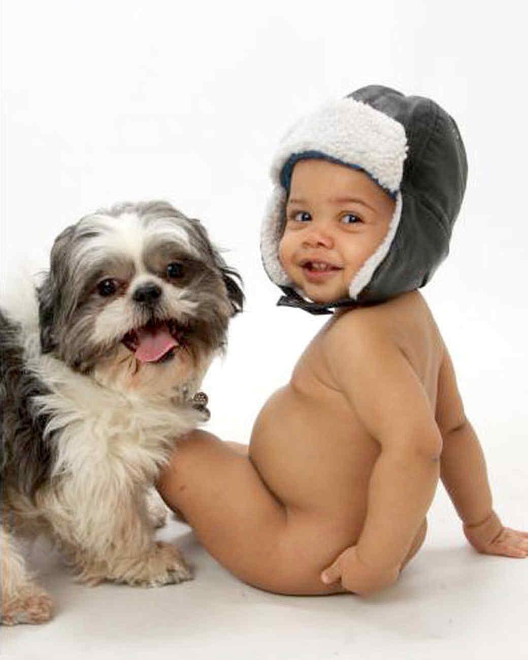 ugc-adoptable-0811-33259466.jpg