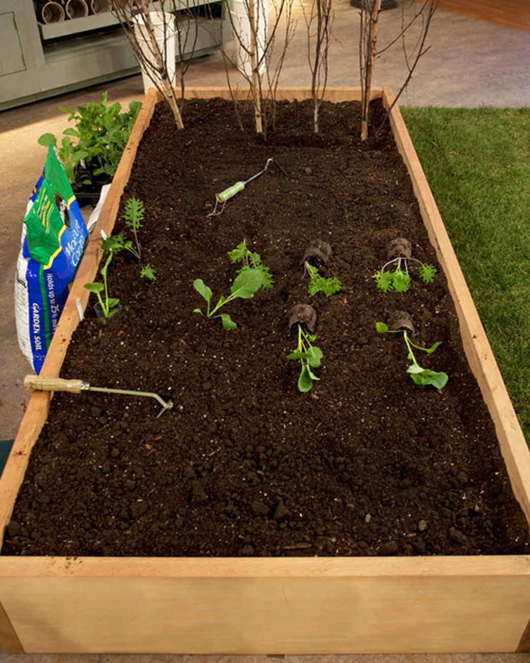 Planting Your Vegetable Garden & Video | Martha Stewart